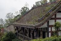Vegetation growing on the roof of an old building in the mountain