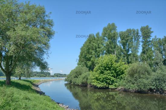 Wuppermuendung in den Rhein,Leverkusen,NRW,Deutschland