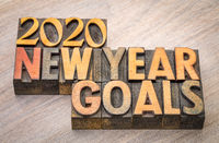 2020 New Year goals word abstract in wood type