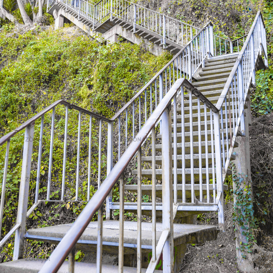 Stairs at the side of a mountain with vines