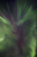 Nordlicht Korona in Inari, Finnland