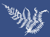 a white outline silhouette of a fern on a blue background