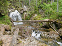 waterfall Riesloch, wooded rock massif, Bodenmais, national park Bavarian Forest
