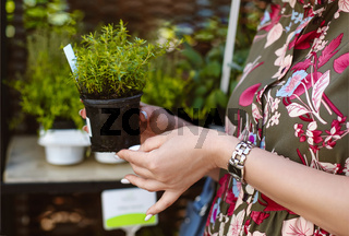 Smiling woman shopping for flowers in garden centre