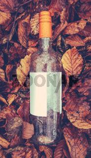 Discarded Wine Bottle