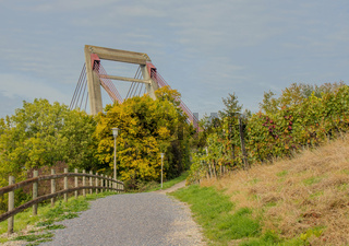 Träger der Rheinbrücke bei Schaffhausen, Schweiz