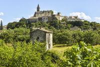 Altes kleines Dorf Grillon mit Obstgarten und Feigenbaum
