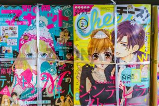 Manga on Bookstore, Japan