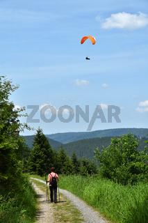 Wandern im Nationalpark Schwarzwald bei Baiersbronn auf dem Sankenbachsteig