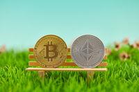 Ether und Bitcoin Münze als Kryptowährung