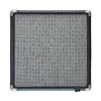 Isolated Guitar Amplifier Speaker