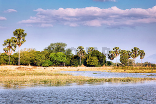 Landschaft am Shire, Liwonde Nationalpark, Malawi | Landscape at Shire River, Liwonde National Park, Malawi