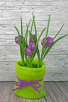 Frühling lila Tulpen auf Holz