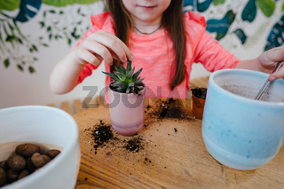 Little girl replanting a house plant in another pot