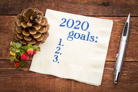 2020 year goals list on napkin