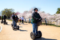 Washington Mall with tourists during the cherry blossom festival on segways