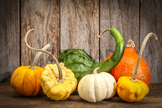 winter squash and ornamental gourds