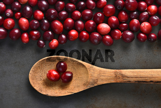 Wood Spoon and Cranberries
