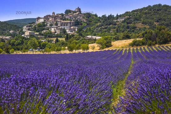 Altes Dorf Simiane-la-Rotonde mit Lavendelfeld im Vordergrund