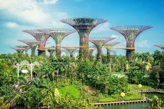 Garden Marina Bay Sands Singapore