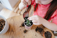 Little girl digs up the ground for rosetting with a spoon