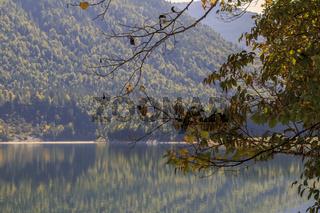 Herbstliche Spiegelung am See