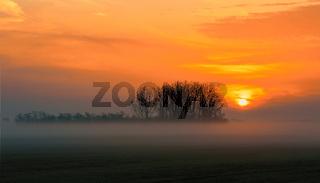 Sunrise landscape of Hortobagy landscape