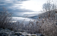 Frosted winter landscape in cold temperature with ice and hoar frost on lake, rime on crisp, frozen leaves and mountains in the horizon at sunset with sun rays