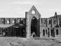 Tintern Abbey (Abaty Tyndyrn) in Tintern, black and white