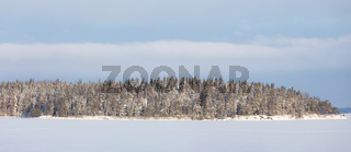 Lake landscape and forest island at winter