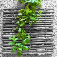 Green plant over black and white bamboo decoration on wall