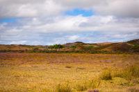 Landschaftsimpression Insel Texel