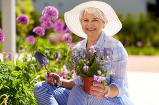 senior woman planting flowers at summer garden
