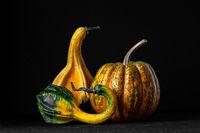 Three decorative pumpkins on a black background.