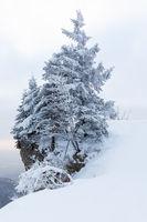 Winter Erlebnisse