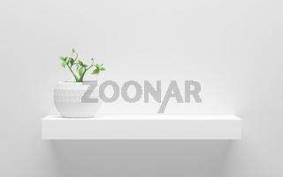 white shelf with green potted plant on wall with light from the top