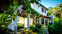 White orchids hanging down in front of an old villa in colonial style