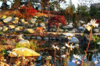 bench by seoul botanic park