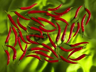 Rote Pepperoni auf farbigem Untergrund