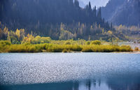 Mountain Lake with plants and trees in USA