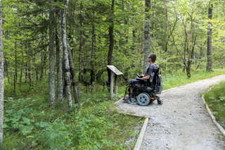 Man on a wheelchair in a forest.