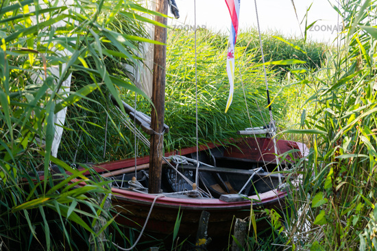 Small Zees boat In the reed, sailboat, fishing boat