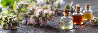 Panoramic header of essential oil bottles and clary sage