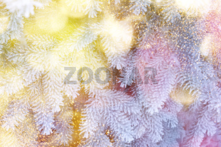 Christmas winter fir tree scenic background. Branches covered with snow in the frost. Copy space. Falling sparkles and lights bokeh closeup. Soft pastel toned blue, gold and purple. Greeting card background