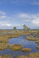 Moorlandschaft auf der Atlantikinsel Tustna
