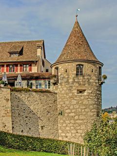 Schloss Laufen am Rheinfall bei Schaffhausen, Schweiz