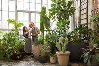 Gärtnerei Team bei Inventur von Pflanzen