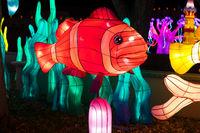 Dragon Lights Albuquerque, Fish  Silk lantern celebrates the Chinese New Year