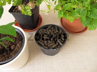 Pferdedung Pellets zum Düngen von Pflanzen