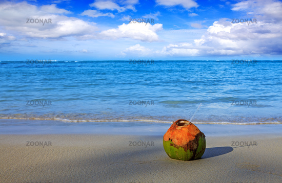 Cocktail in coconut on caribbean beach.Travel background.